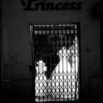 08_DK_Princess